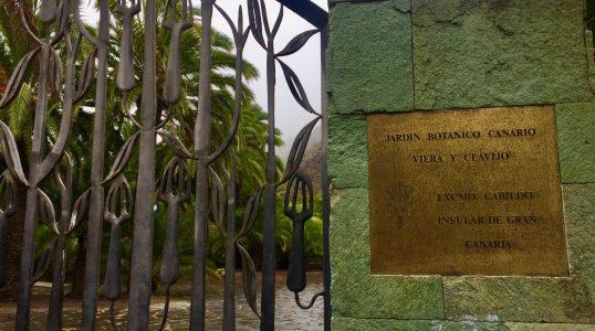 Botanical Garden Viera y Clavijo