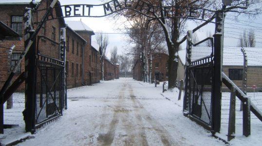 Auschwitz-Birkenau State Museum